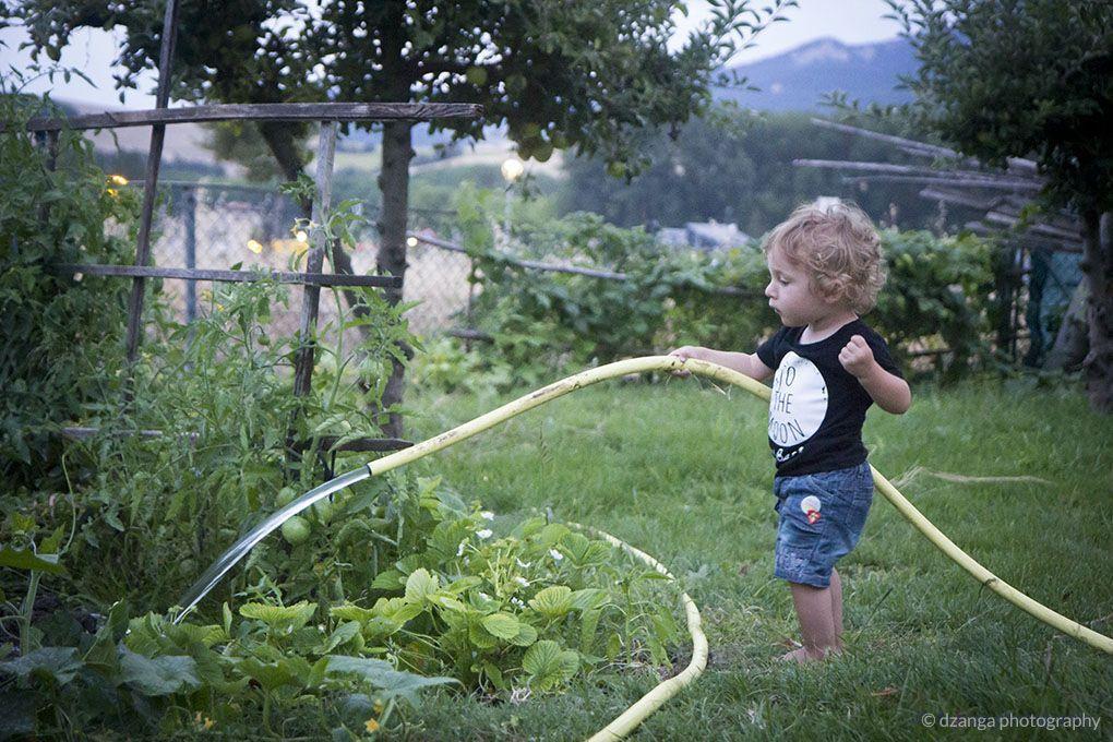 Cómo hacer un huerto ecológico familiar